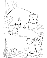 Small Picture Polar Bears Coloring Pages And Bear Cub Coloring Pages esonme