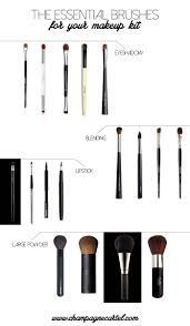 makeup brushes for beginners the four you need and why they ll make life