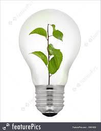 Green Energy Lighting Environment Concept Green Leaves Inside Light Bulb Isolated On White Background