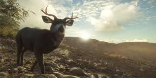 Mule Deer Thehunter Call Of The Wild Wiki Fandom