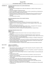 Marketing Executive Resume Examples Senior Marketing Executive Resume Samples Velvet Jobs 5