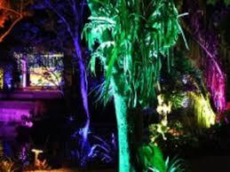 Naples Botanical Gardens Night Lights December 21 Night Lights In The Naples Botanical Garden Naples Marco
