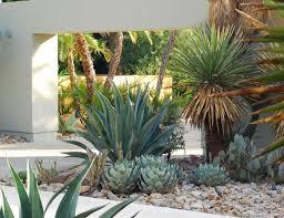 Palm Springs Garden Design Image Result For Modern Palms Springs Landscape Architecture
