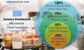 travel consultant average salary in