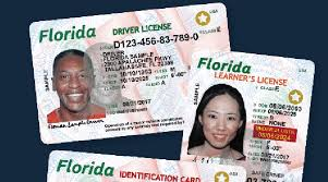 New The Implement Driver's – Florida Usa License Of In Today Sample