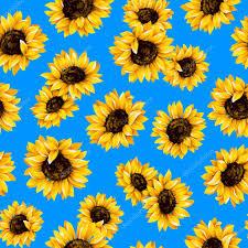 Sunflower Pattern Enchanting Sunflower Pattern Stock Photo © Daicokuebisu 48