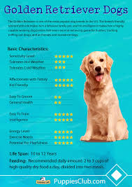 Puppy Feeding Chart Golden Retriever Golden Retriever Puppy Feeding Chart Goldenacresdogs Com