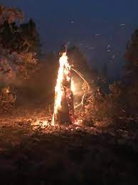 Bootleg Fire in Southern Oregon grows ...