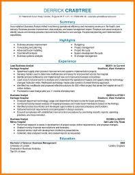 13+ Best Resume Examples | Historyvs The Davinci Code