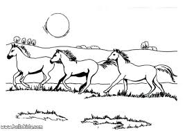 Wild Horse Coloring Pages To Print Wild Horse Herd Coloring Pages