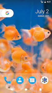 Goldfish HD Wallpapers : Amazon.de ...