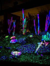 Desert Botanical Garden Light Display Electric Desert At The Desert Botanical Garden Desert
