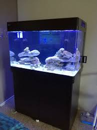 Led Lights For Red Sea Max 250 Fs Red Sea Max 250 Durban Hardware For Sale Swap