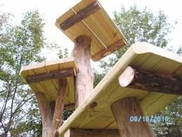 5 tier outdoor cat tree
