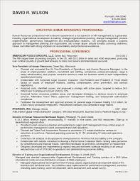 Resume Objective Examples Accounting Manager Beautiful Engineering