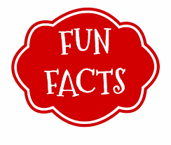 Fun Fact Png Graphic Royalty Free Stock All - Clip Art Library