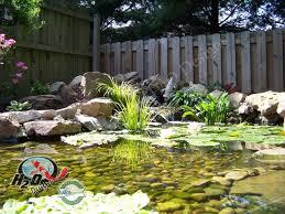 koi pond lighting ideas. Garden Design With KOI Pond Backyard Uamp Small Ideas For Your Kentucky Koi Lighting