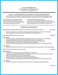 Business Plan For Used Car Dealership Sample Resume General