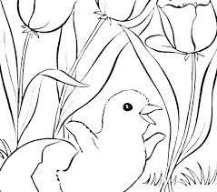 Free Preschool Coloring Pages Free Preschool Coloring Pages