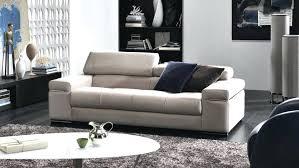 Sofa Color Ideas For Living Room Fascinating Best Sofa Colors Monicashi