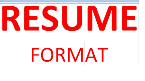 Resume Format Youtube
