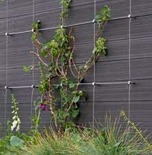 diy green wall cable trellis kit cable