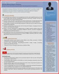 Sample Senior Executive Resume Visual Resume Template New Free