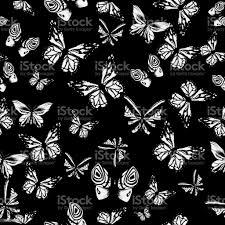 Vector Art White Butterflies On Black ...