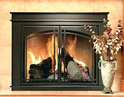 wondrous design ideas gas fireplace glass doors 2 door removal homey idea