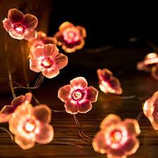 Flower Lights For Bedroom Amazon Com Eonlyx Plum Flower Lights 10ft 30led Cherry