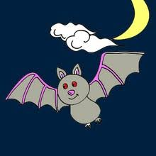 Small Picture Bat fun facts to find out online activities for kids