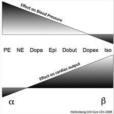 Inotropes Vasopressors And Other Vasoactive Agents Litfl