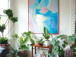 follow these 4 very simple steps to keep your houseplants alive even if you have