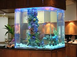 fish tank lighting ideas. A Lot Of Good Ideas In Regard To Fish Tanks Can Be Obtained From Internet And Various Books That Have Been Published On The Subject. So, Lovers! Tank Lighting Z