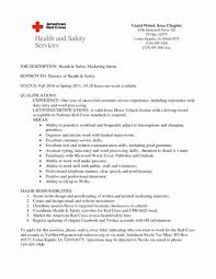 It Intern Job Description Fresh Submitting An Assignment Better ...