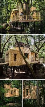 Mushroom Dome Cabin 1 On Airbnb In The World  Cabins For Rent Treehouse Vacation California