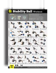 Body Fitness Chart Buy Exercise Ball Workout Poster Now Laminated Total Body
