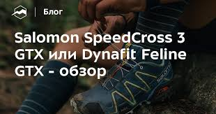 Salomon SpeedСross 3 GTX или <b>Dynafit</b> Feline GTX - обзор ...