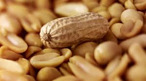 Could a pill help with peanut allergies? - ABC News