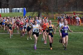 Where do You Rank in Your Class in Ohio? Final 2015 XC Rankings by Grade -  11/10