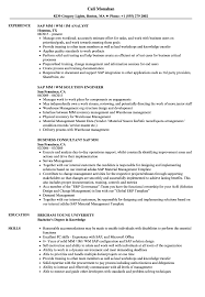 Sap Mm Sample Resumes Sap Mm Resume Samples Velvet Jobs 2