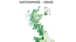 Hay fever maps: Which areas to avoid where the pollen concentrations ...