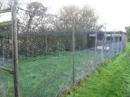 chicken wire fence ideas. Chicken Wire Fence And Mesh Panels Uk .  Ideas