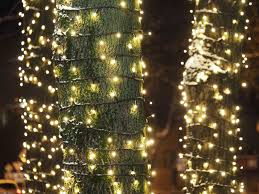 How To Decorate A Tree Trunk With Christmas Lights How To Wrap Trees With Outdoor Lights
