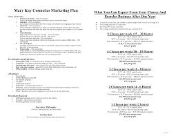 Starting A Cosmetics Company Business Plan And Start Up Package Mac