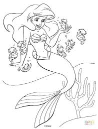 Free Printable Ariel Coloring Pages And Seahorses Free Printable