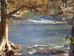 Guadalupe River By Lazy L L Campground Rainbow Trout