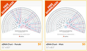 Chart Downloads Free Gedtree Free Downloads Of Xdna Charts Ongenealogy