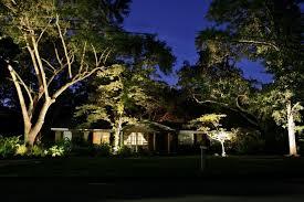 1 6 outdoor garden landscape lighting ideas spotlighting