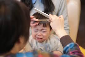 小さな僕とのはじめてづくしの日々赤ちゃんのヘアカット はじめて
